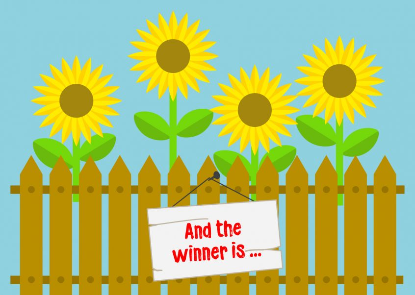 sunflower-winner
