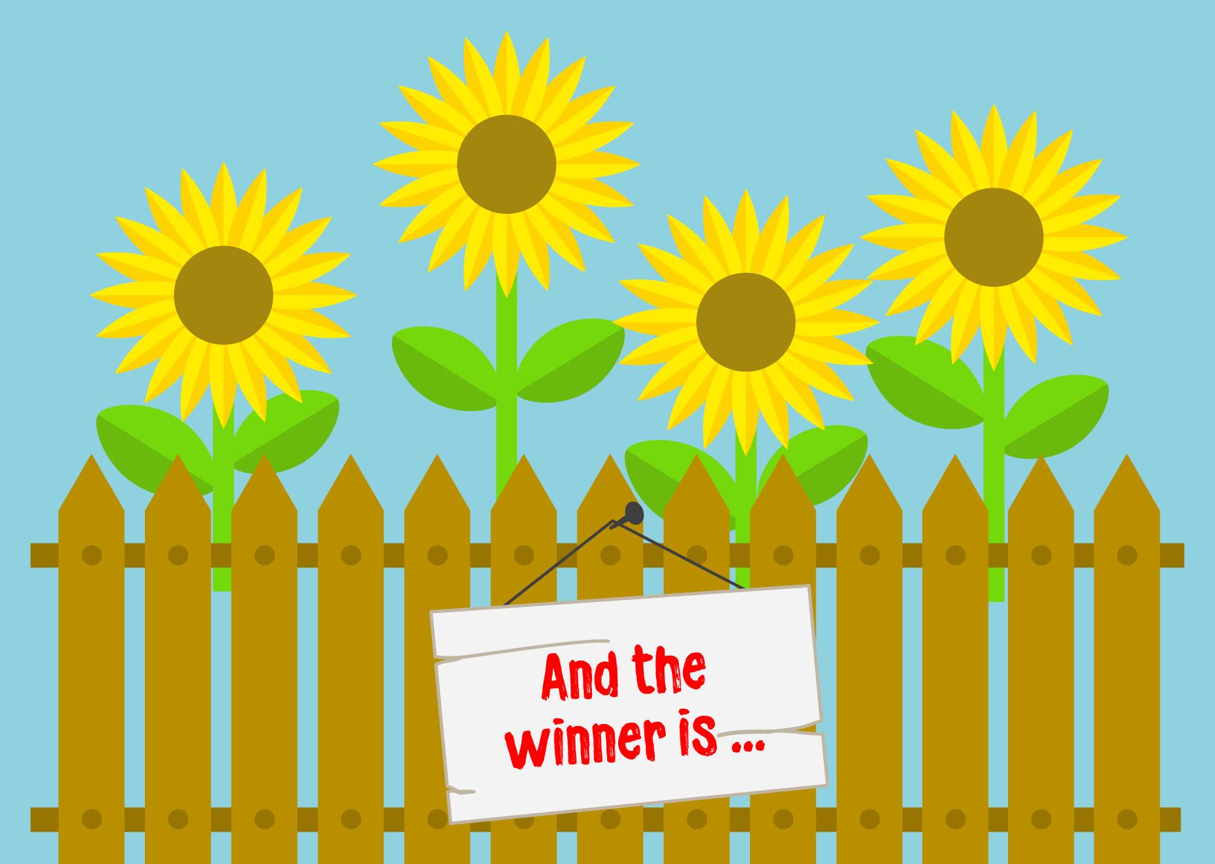 sunflower-winner